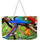 Birds Eye Weekender Tote Bag