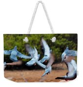 Birds In Flight 030515aa Weekender Tote Bag