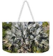 Bismarck Palm  Bismarckia Nobilis Weekender Tote Bag