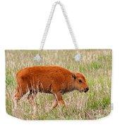 Bison Calf Grand Teton National Park Weekender Tote Bag