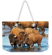 Bison Family In The Lamar River In Yellowstone National Park Weekender Tote Bag