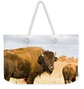 Bison On Tall Grass Iv Weekender Tote Bag