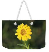 Bit O Sunshine Weekender Tote Bag