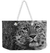 Black And White Amur Leopard Weekender Tote Bag