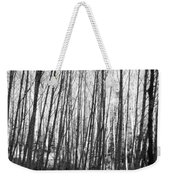 Black And White Birch Stand Weekender Tote Bag