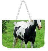Black And White Paint Horse Weekender Tote Bag