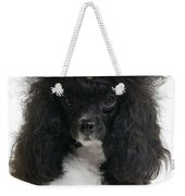 Black And White Poodle Weekender Tote Bag