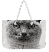 Black And White Siamese Cat Weekender Tote Bag