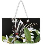 Black And White Swallowtail Square Weekender Tote Bag