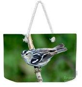 Black-and-white Warbler Mniotilta Varia Weekender Tote Bag