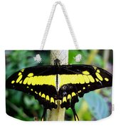 Black And Yellow Swallowtail Butterfly Weekender Tote Bag