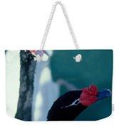Black Beaked Swans Weekender Tote Bag