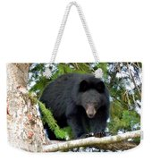Black Bear 2 Weekender Tote Bag