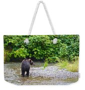 Black Bear Eating A Salmon In Fish Creek In Tongass National Forest-ak Weekender Tote Bag