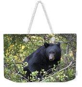 Black Bear II Weekender Tote Bag