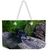 Black Beetle Weekender Tote Bag