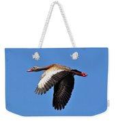 Black-bellied Whistling-duck In Flight  Weekender Tote Bag