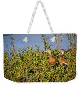 Black-bellied Whistling Ducks Weekender Tote Bag