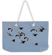 Black-bellied Whistling Ducks In Flight Weekender Tote Bag