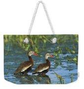 Black-bellied Whistling Ducks Wading Weekender Tote Bag