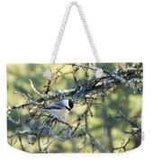 Black Capped Chickadee Weekender Tote Bag