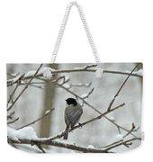 Black Capped Chickadee - Poecile Atricapillus Weekender Tote Bag