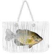 Black Crappie Pan Fish In The Reeds Weekender Tote Bag