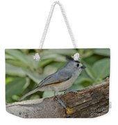 Black-crested Titmouse Weekender Tote Bag