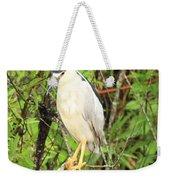 Black Crowned Night Heron Weekender Tote Bag