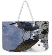 Black Crowned Night Heron And Shadow Weekender Tote Bag