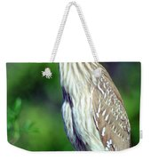 Black-crowned Night Heron Juvenile Weekender Tote Bag