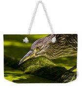 Black Crowned Night Heron Pictures 115 Weekender Tote Bag