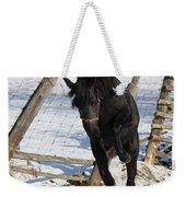 Black Diamond Jubilee 3 Weekender Tote Bag
