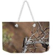Black-faced Cuckoo Shrike Weekender Tote Bag