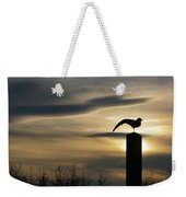 Black Headed Gull   Larus Ridibundus Weekender Tote Bag