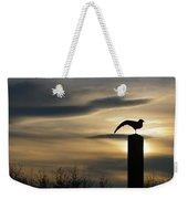 Black Headed Gull   Larus Ridibundus Weekender Tote Bag