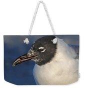 Black Headed Gull Portrait Weekender Tote Bag