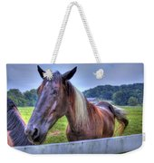Black Horse At A Fence Weekender Tote Bag