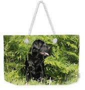 Black Labrador Dog Weekender Tote Bag