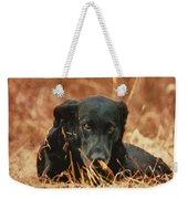 Black Labrador Weekender Tote Bag
