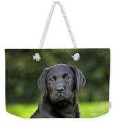 Black Labrador Puppy Weekender Tote Bag