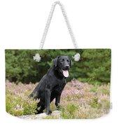 Black Labrador Retriever Weekender Tote Bag