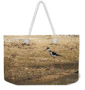 Black-necked Stilt Weekender Tote Bag by Robert Bales
