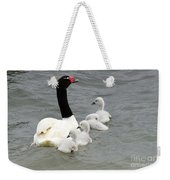 Black Necked Swan Patagonia  Weekender Tote Bag