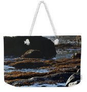 Black Rocks Lichen And Sea  Weekender Tote Bag