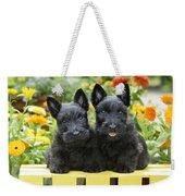 Black Scotties Weekender Tote Bag