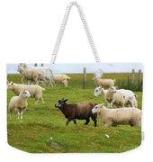Black Sheep Weekender Tote Bag