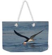 Black Skimmer Rynchops Niger Skimming Weekender Tote Bag