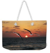 Black Skimmers At Sunset Weekender Tote Bag