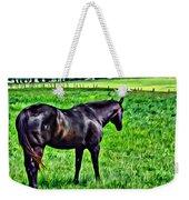 Black Stallion In Pasture Weekender Tote Bag